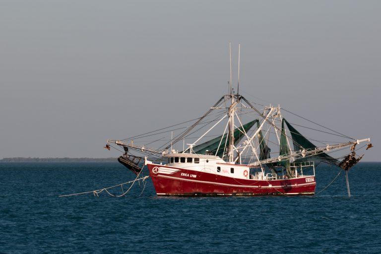 La pesca de arrastre ha transformado los ecosistemas marinos. Foto: Jim Gain.