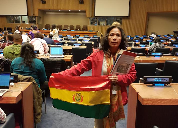 Alipaz muestra la bandera boliviana antes de su intervencion en la plena del Foro de Cuestiones Indígenas de la ONU que se realiza en Nueva York .