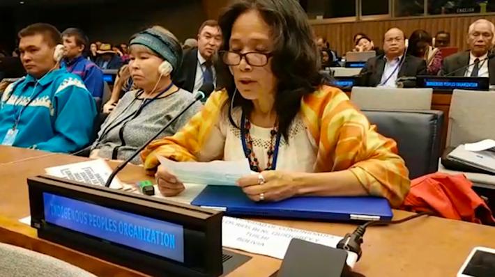 Alipaz durante su intervención en el pleno de la 17 sesión del Foro de Cuestiones Indígenas de la ONU que se realiza en Nueva York. Foto: Captura de webtv ONU.