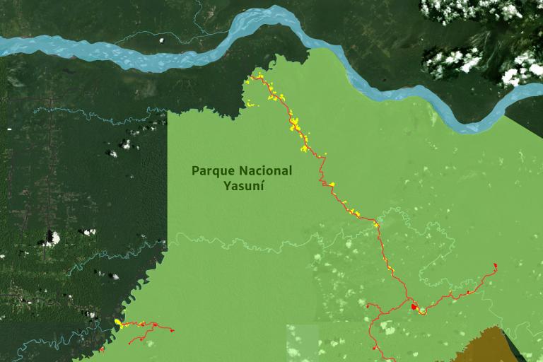 Los puntos en amarillo son las zonas que se han ido deforestando alrededor de las carreteras. Crédito: MAAP, Amazon Conservation Team