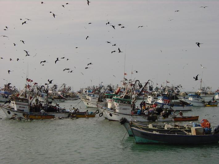 Actividades económicas como la pesca y el turismo resultarían afectadas por la explotación petrolera, según los expertos. Foto. Oceana.