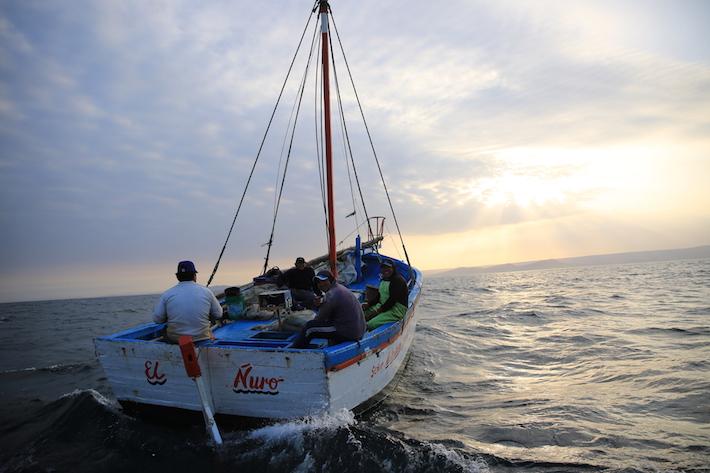 Pescadores artesanales del norte del Perú están preocupados por los riesgos de las actividades petroleras sobre la biodiversidad. Foto: Sandra Otoya /Oceana