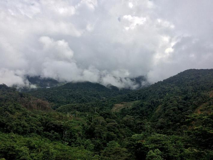 """""""Esta es nuestra fuente de agua. Sin estos bosques no podríamos vivir. Los venimos protegiendo hace miles de años y queremos seguir por el mismo camino"""", José Kaibi, vicepresidente de COMARU. Foto: Jack Lo."""