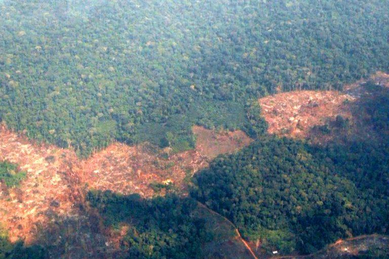 Deforestación en el departamento de Guaviare en la zonadonde viven los Nukak. Foto Alberto Castaño