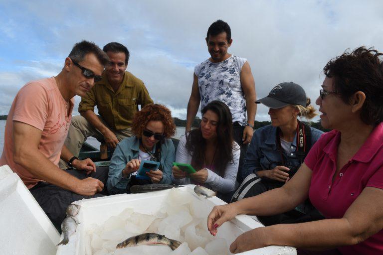 El equipo del Proyecto Ciencia Ciudadana para la Amazonía navegaron en el Amazonas para experimentar con el aplicativo Ictio. Foto: Rob Wallace.