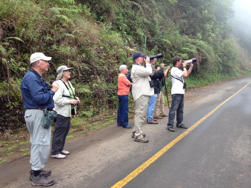 En Colombia se han organizado por regiones y en cada lugar hay una persona que coordina el GBD. Foto: Carlos Mario Wagner.