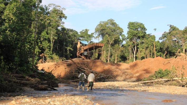 En el límite del parque Bahuaja Sonene con la zona de amortiguamiento, los mineros ilegales han removido la tierra y desviado el cauce del río Malinowski. Donde están los árboles comienza el parque. Foto: Vanessa Romo.
