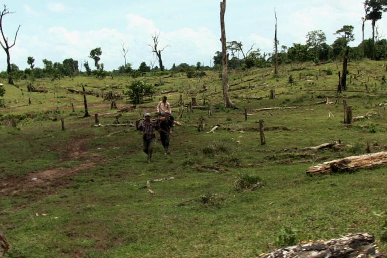 Nicaragua: Áreas recientemente deforestadas en reserva Bosawas. Foto: Michelle Carrere.