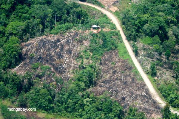 Ecuador: la deforestación alrededor de un asentamiento cerca al Río Napo. Foto: Jeremy Hance