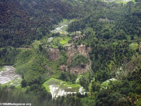 Madagascar: bosque deforestado en la isla africana. Foto: Rhett A. Butler