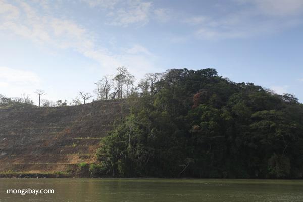 Panamá: boque deforestado durante los trabajos para la expansión del Canal, en Gamboa. Foto: Rhett A. Butler