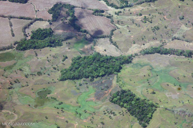 Costa Rica: vista aérea de fragmentos de bosque. Foto: Rhett A. Butler