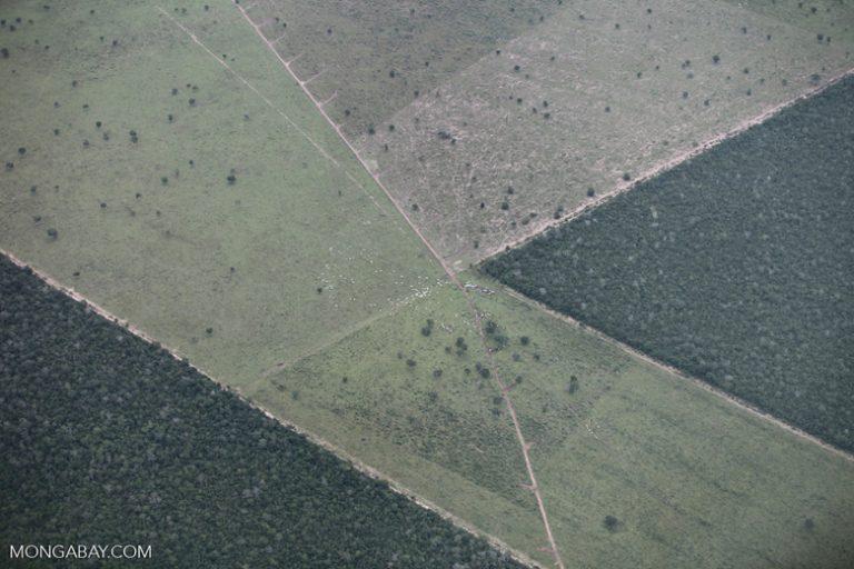 Brasil: patrones geométricos de deforestación. Foto: Rhett A. Butler