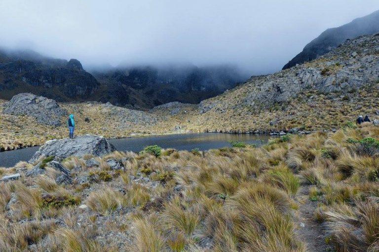Áreas naturales de Río Blanco. Foto: Yasunidos Guapondelig.