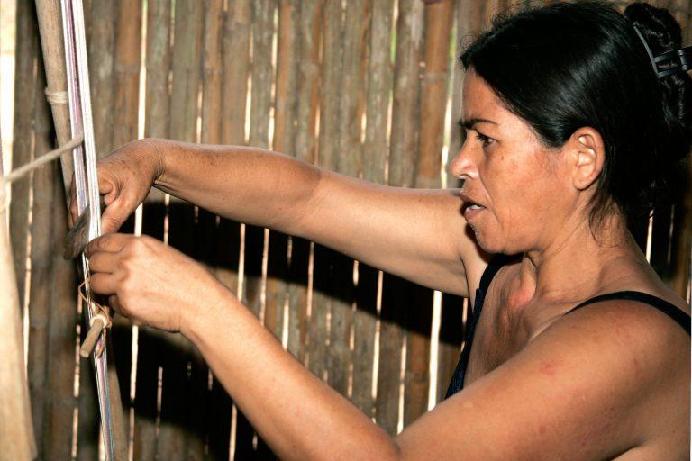 La gestión territorial ha permitido al pueblo Tacana diversificar sus fuentes de ingresos económicos. Foto: WCS Bolivia.