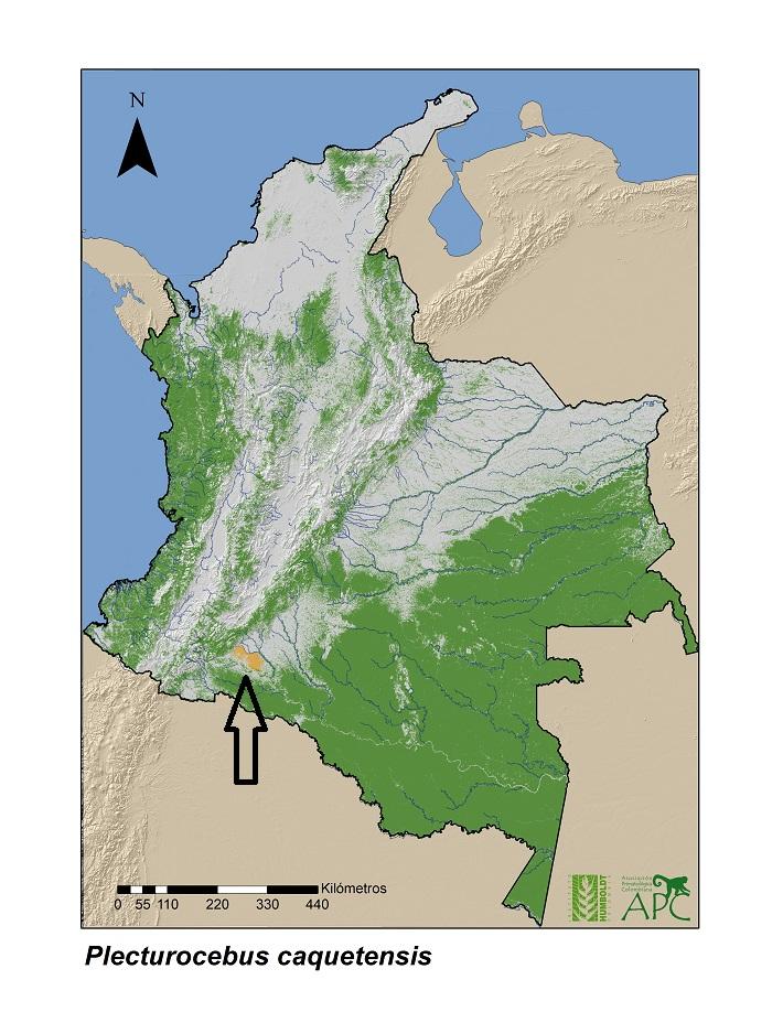 En color naranja, señalado por la flecha, se puede ver la única zona donde habita el mono tití del Caquetá.