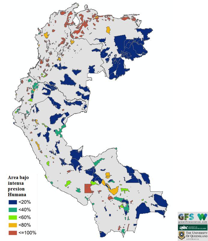 El difícil acceso y la poca densidad poblacional de la Amazonia hacen que las áreas en esta zona estén mejor conservadas que las andinas y costeras.
