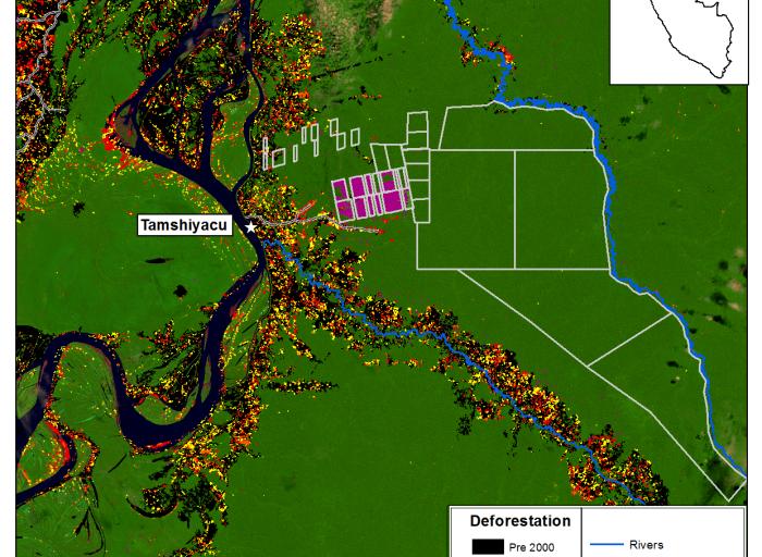 Perú sentencia Dennis Melka La imagen muestra la zona deforestada en Tamshiyacu. Fuente: MAAP.