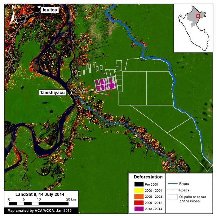La imagen muestra la deforestación en los terrenos de la empresa Cacao del Perú Norte, ahora Tamshi SAC. Fuente: MAAP.