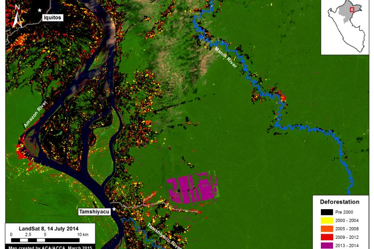 En Tamshiyacu, en la región Loreto, 2 126 hectáreas que fueron desboscadas para ser dedicadas a cultivos de cacao. Fuente: MAAP.
