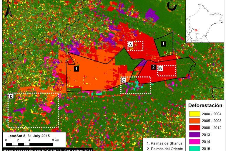 Un total de 16 800 hectáreas de bosque fueron arrasadas por las plantaciones de palma aceitera en Palmas del Shanusi, Palmas del Oriente y zonas aledañas. Fuente: MAAP