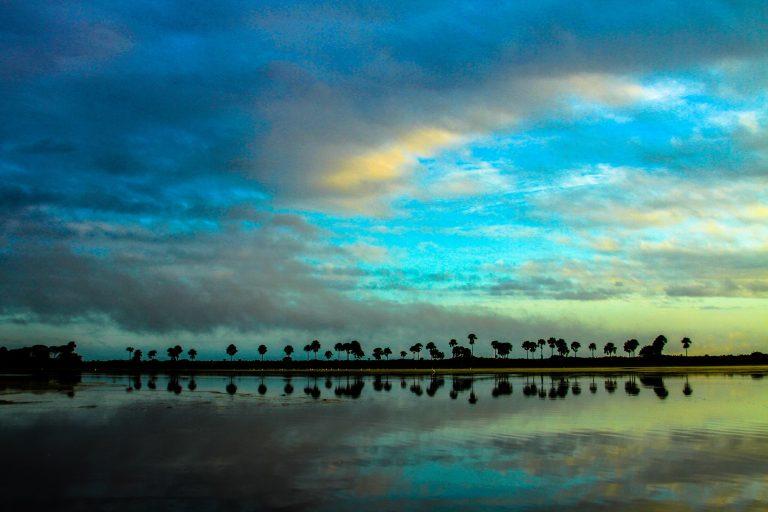 Paisaje de los llanos orientales. Foto: Fundación Cunaguaro.