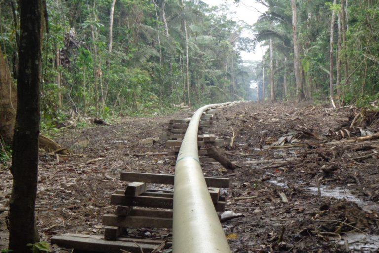 El oleoducto de PetroAmazonas y Amerisur y el área talada dentro del territorio de la comunidad Wisuyá. 14 de diciembre 2015. Foto: Alonso Aguinda.