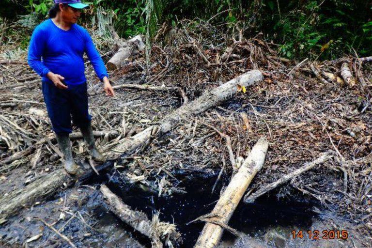 Darwin Rodríguez de la comunidad Wisuyá inspecciona aceite derramado por las maquinarias de la empresas PetroAmazonas y Amerisur durante la construcción del oleoducto. 14 de diciembre 2015. Foto: Alonso Aguinda.