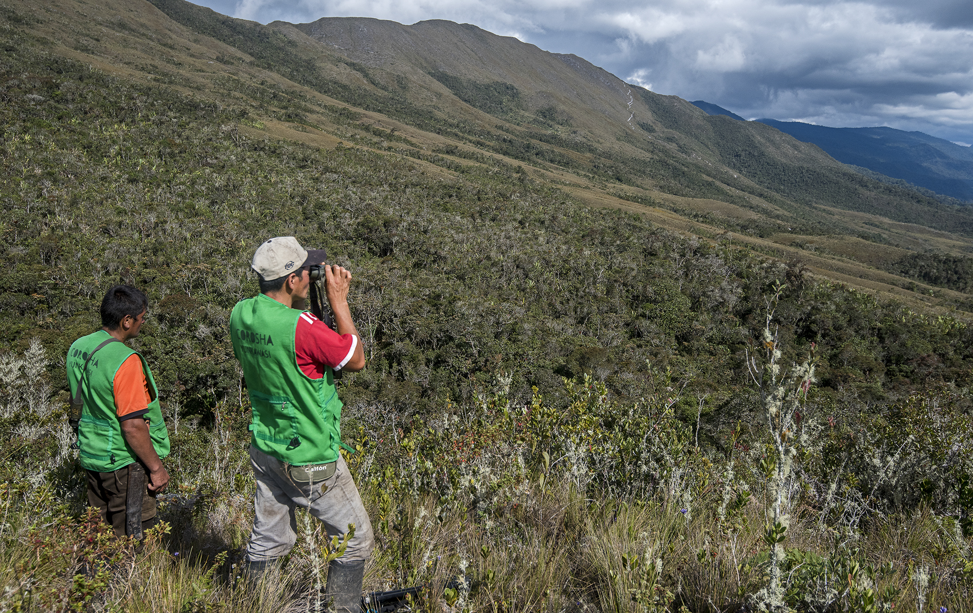 La expedición para buscar a Paddy se realizó en el año 2015. Foto: Michael Tweddle.