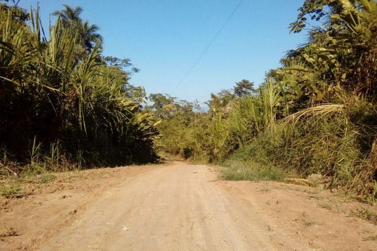 La legislación permitirá ahora detener obras antes de que ocasionen daños ambientales. Foto: Gobierno Regional de Loreto.