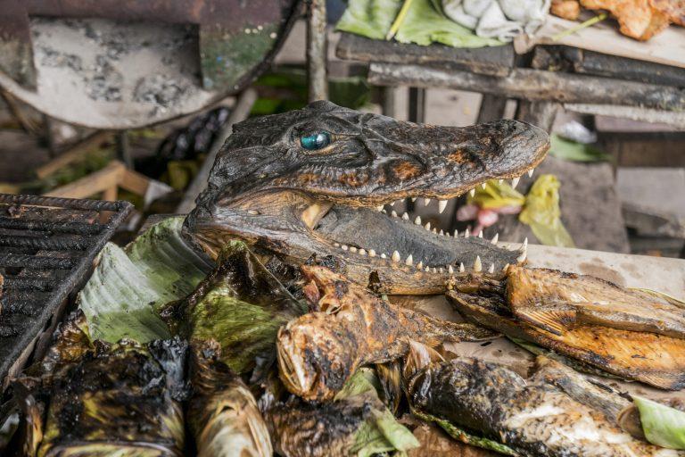 En los mercados de la Amazonía se exhiben partes de animales, muchas veces para rituales tradicionales. Foto: WCS.