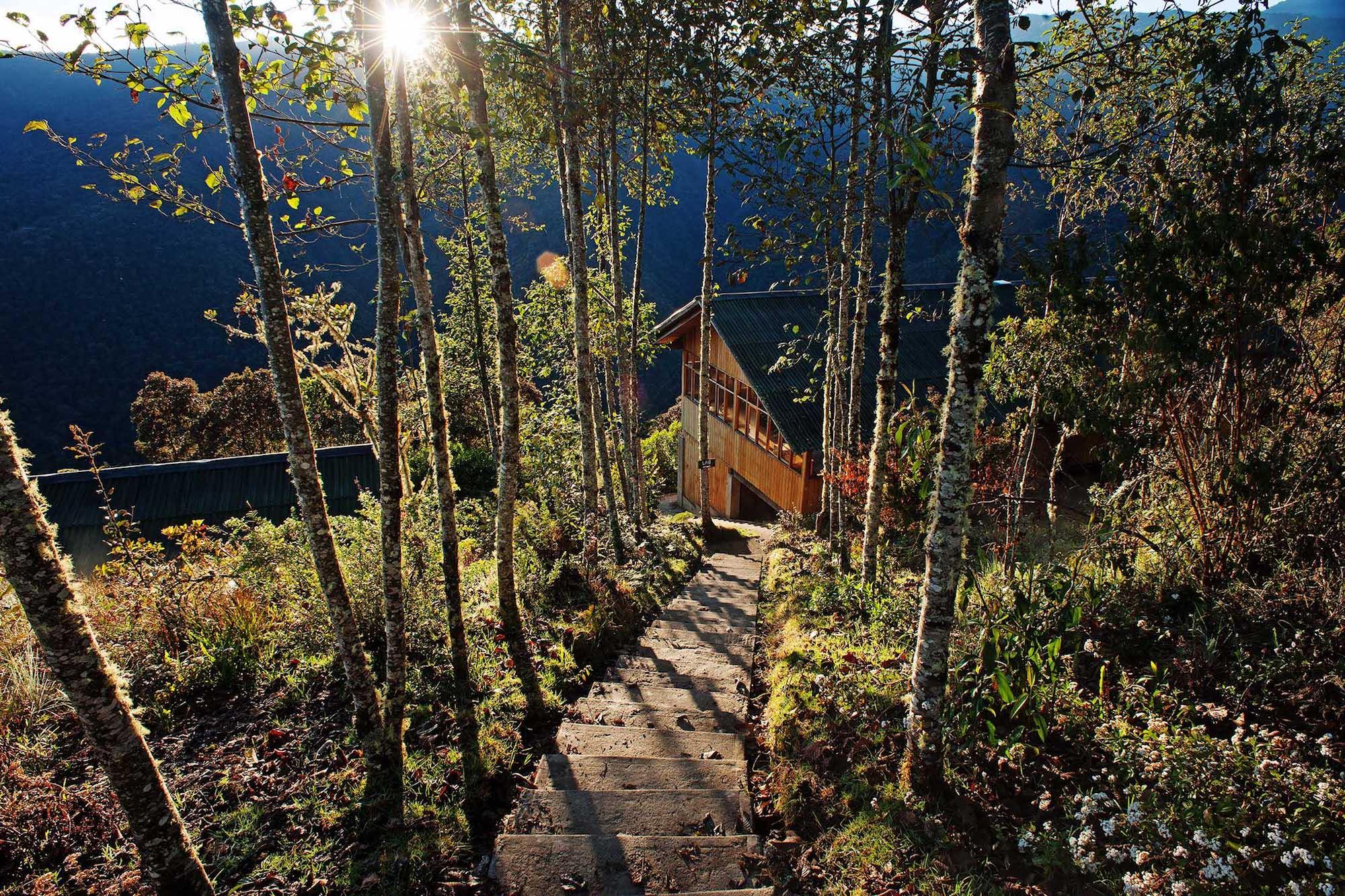En Wayqecha el bosque nublado se encuentra en buen estado de conservación. Foto: Walter Wust.