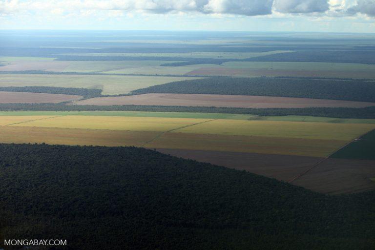 Amazonía de Brasil: Impresionante imagen de la Amazonía de Brasil: reservas forestales, campos de pastoreo y granjas de soya. Foto: Rhett A. Butler