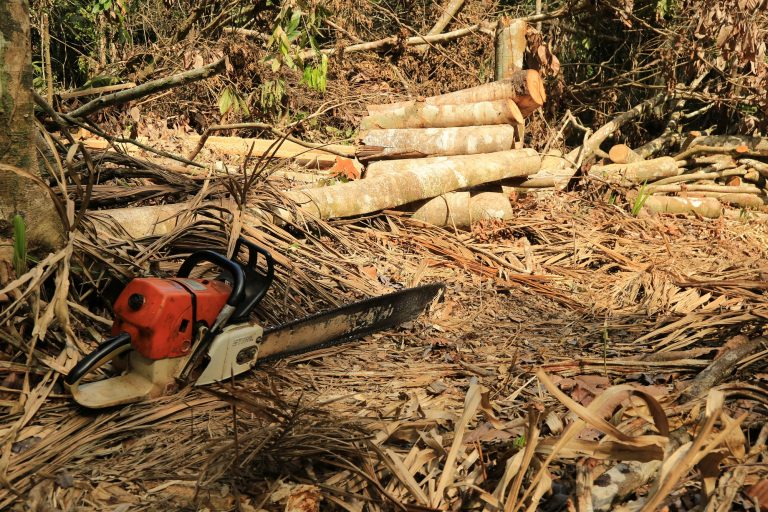En abril de 2018 una operación militar permitió capturar a 3 personas que deforestaban en el Parque Tinigua. También se incautaron varias motosierras. Foto: Cormacarena.