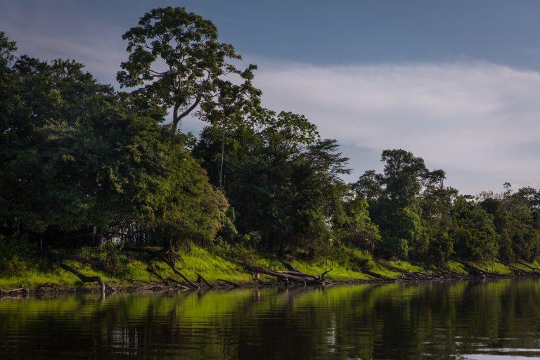 La reserva Pacaya Samiria es uno de los dos sitios Ramsar que se encuentran en la región Loreto. Foto: Diego Perez/WCS.