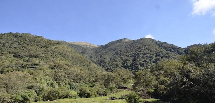 Una vista del ingreso al Parque Carrasco. Foto: Miriam Jemio.