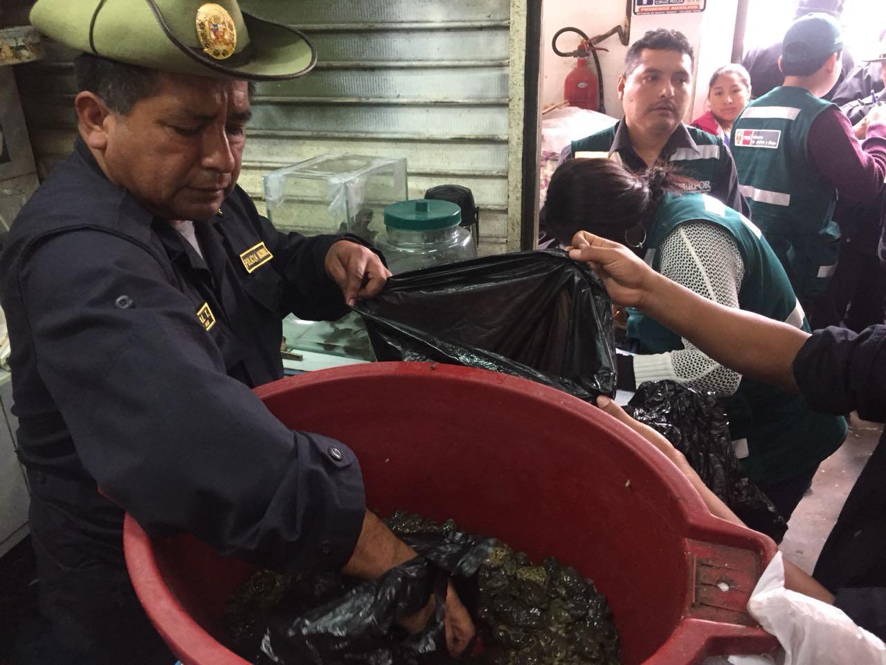 Más de cien efectivos participaron en el operativo donde se incautó más de mil especímenes y partes de animales. Foto: Dirección del Medio Ambiente de la Policía Nacional.