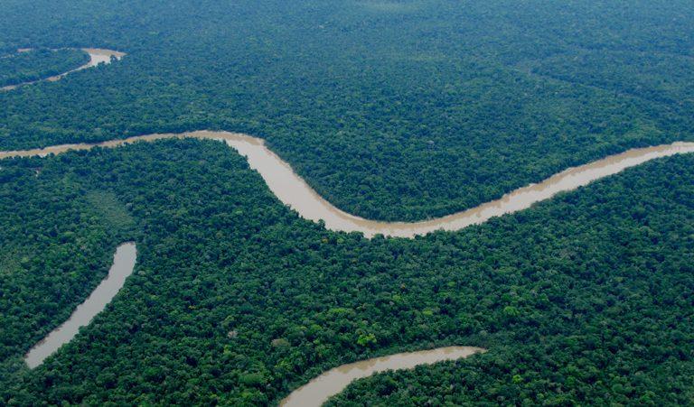 El Parque Nacional Yaguas fue la primera área protegida creada en el año 2018. Foto: Álvaro del Campo.