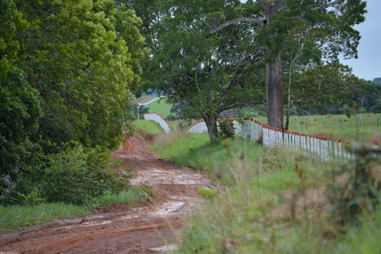 La construcción de vías clandestinas es otro fenómeno típico en el acaparamiento de tierras. Foto: Fundación para la Conservación y el Desarrollo Sostenible (FCDS).