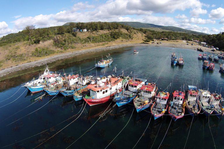 Barcos pesqueros en el área marina Seno Almirantazgo, en Tierra del Fuego. Foto: Daniel Terán / WCS.
