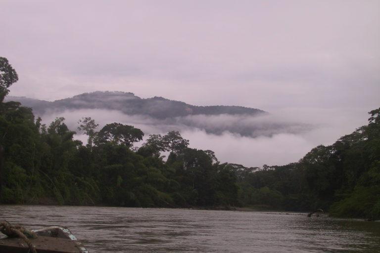 Afluente dentro del Kutuku Shaime. El bosque protector acoge a seis subcuencas hidrográficas y 48 microcuentas. Foto: cortesía de Belén Páez de Fundación Pachamama.