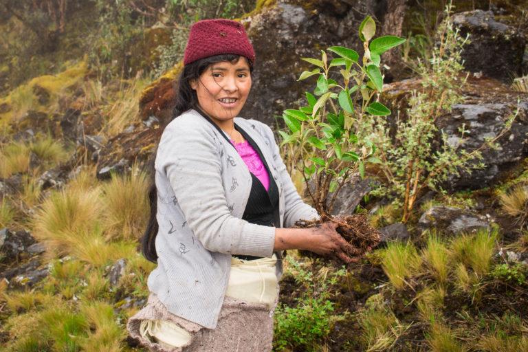 Para las comunidades es importante la provisión de agua que le brindan los bosques de queñoales. Foto: Asociación Armonía.