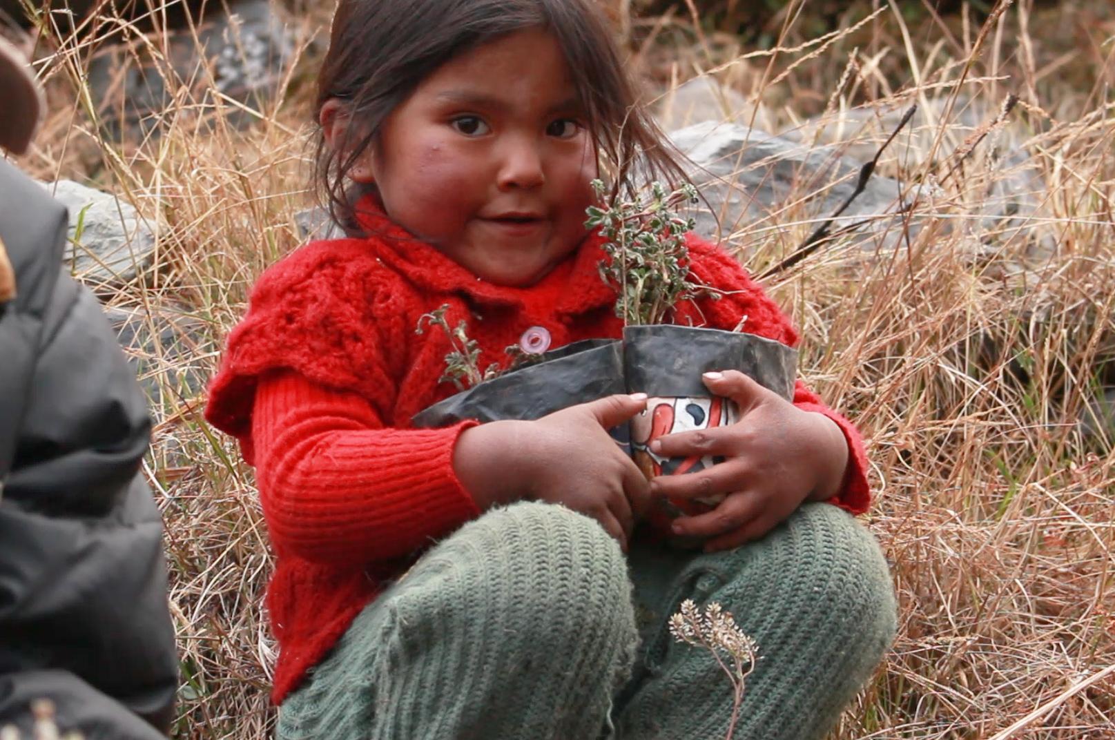 Las familias de las comunidades de Puina y Keara, en el Madidi, están comprometidas con la reforestación. Foto: Asociación Armonia.