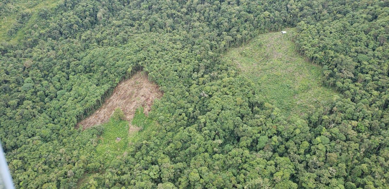 La deforestación en Galilea es otra amenaza que vive este relicto de bosque. Foto: Cortolima.
