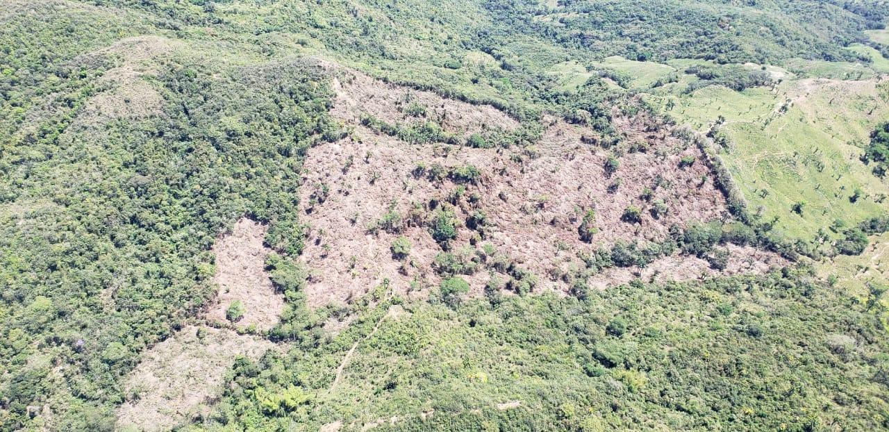 En un sobrevuelo Cortolima evidenció la deforestación de más de 30 hectáreas en el bosque de Galilea. Foto: Cortolima.