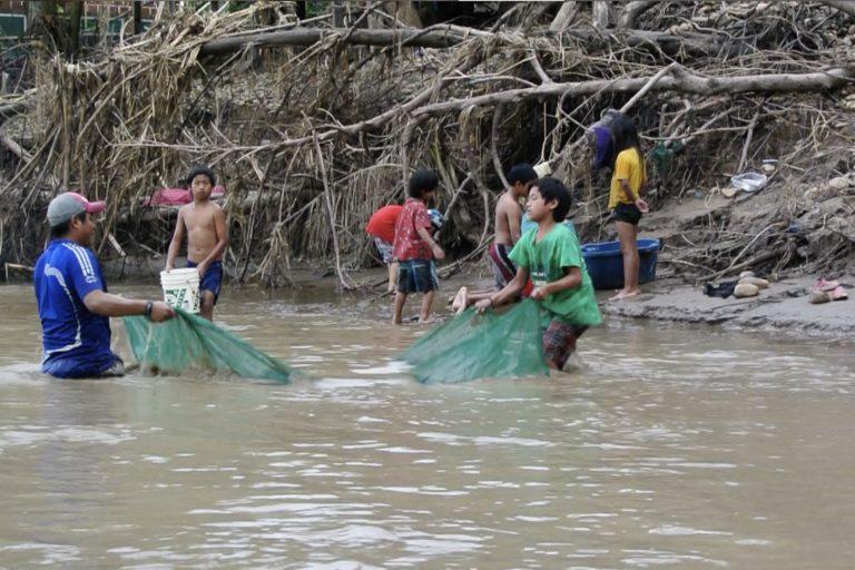 Las comunidades tacanas pescan a los chipi chipis mientras los pequeños peces viajan por el río Benni. Foto: Guido Miranda / WCS.