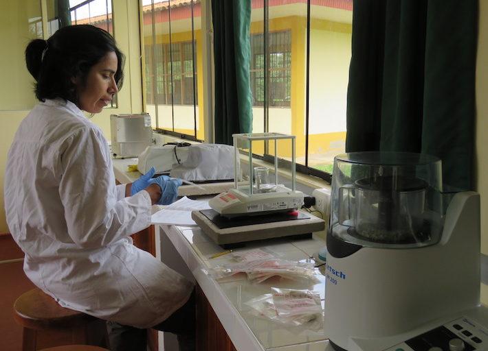 Antes de este estudio, los análisis se realizaban con muestras tomadas directamente en el campo. Foto: CINCIA.