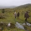 Miles de campesinos en el páramo de Pisba se dedican a actividades agropecuarias de las que basan su sustento. Foto: Gobernación de Boyacá.