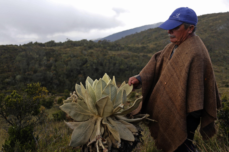 Los campesinos han convivido durante siglos con este ecosistema. Foto: Gobernación de Boyacá.