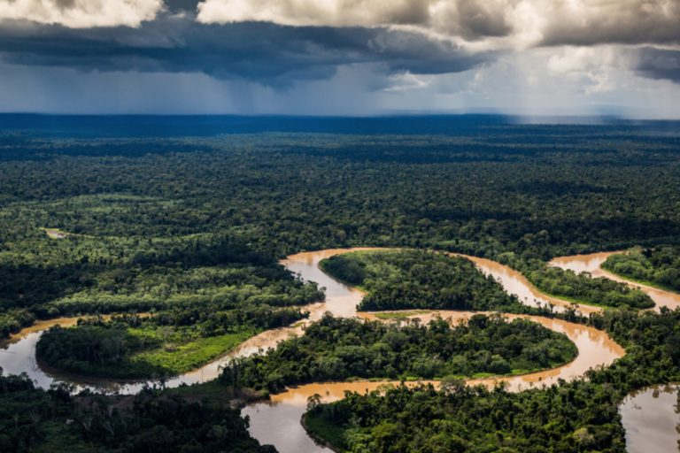 El Perú es el segundo país con mayor superficie amazónica. Foto: Jason Houston/Upper Amazon Conservancy